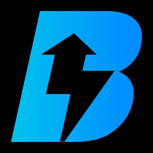 Bizzi Logo
